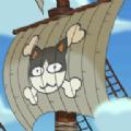加勒比海猫