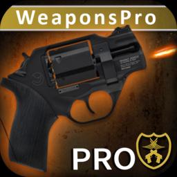 终极武器模拟器Pro完整版