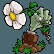 植物大战僵尸TAT版