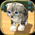 猫咪模拟器中文版